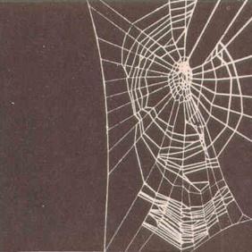 spider heaven